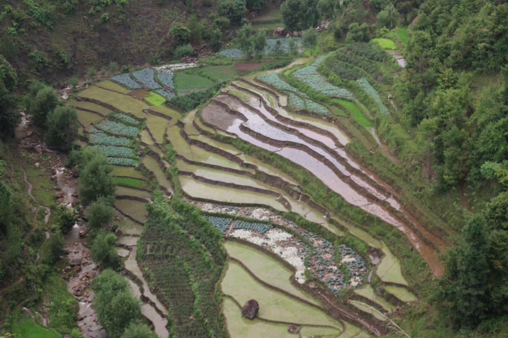 Nepal 8