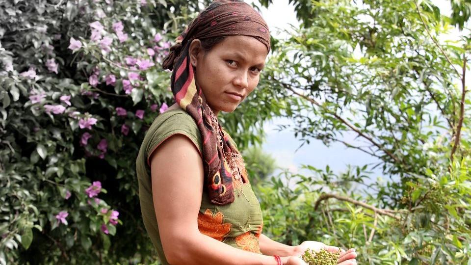 aldea en nepal