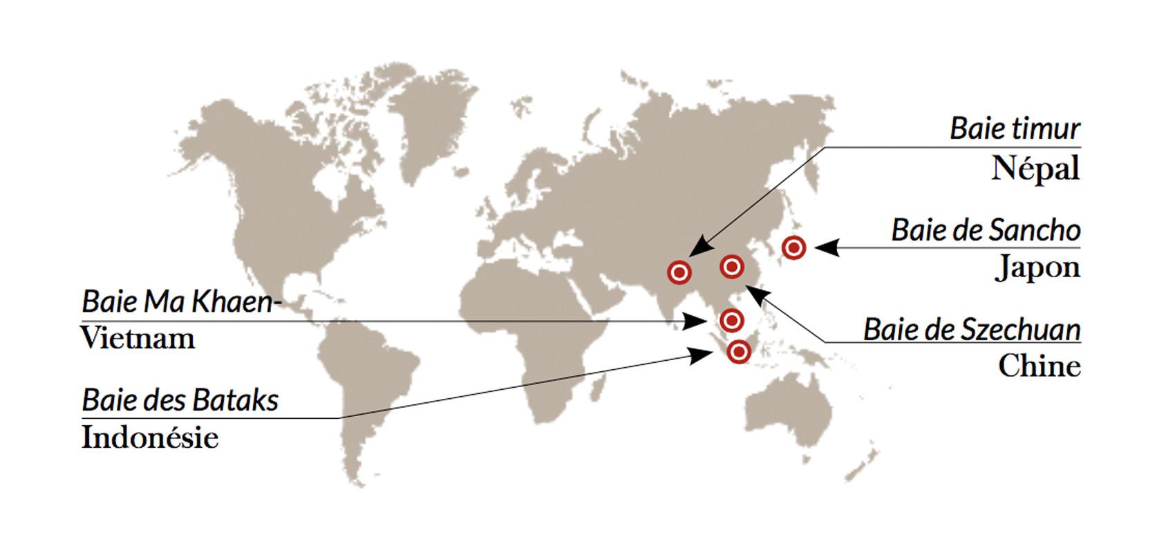 Les Zanthoxylum Piper dans le monde