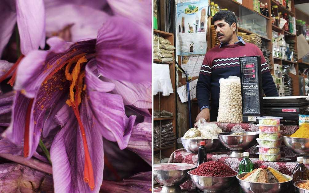 La-fleur-du-safran-iran