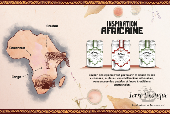 Inspirations culinaires Africaine - Terre Exotique