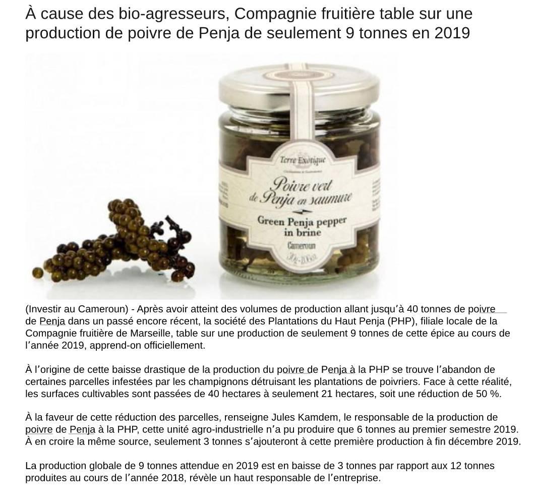 investir-au-cameroun-penja