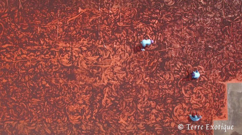 Séchage du poivre Voatsiperifery (Piper borbonense) - Terre Exotique