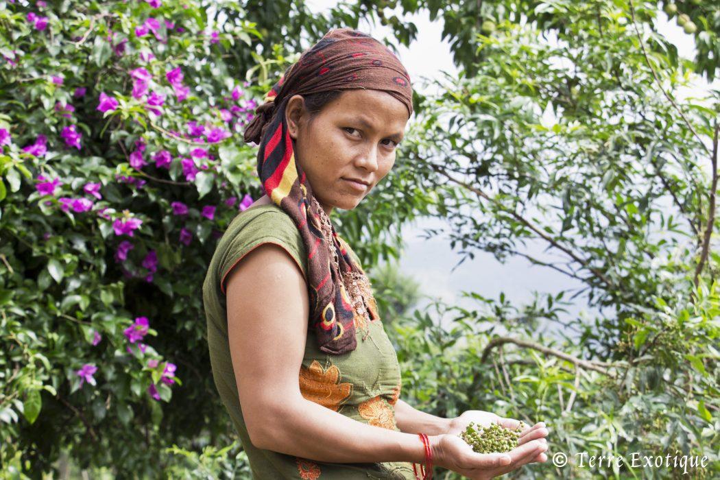 4 Engagement 4 Accompagnement vers une agriculture biologique V2